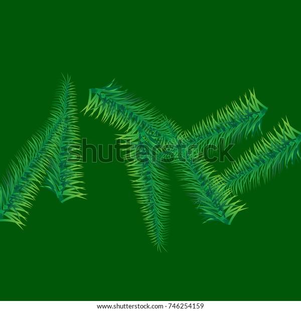 Christmas fir tree texture. Vector illustration