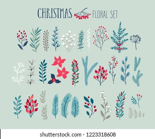Christmas floral set - hand drawn Vector illustration. with floral elements, leaves, flowers. firs and other plants.