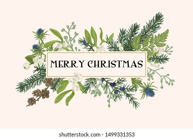Christmas frame with winter plants. Botanical illustration. Composition with spruce, eucalyptus seeds, fern, juniper, mistletoe, larch cones, bluehead. Vector holiday card.