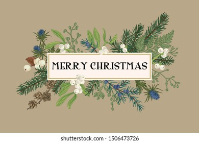 Christmas frame with winter plants on a beige background. Botanical illustration. Composition with spruce, eucalyptus seeds, fern, juniper, mistletoe, larch cones, bluehead. Vector holiday card.
