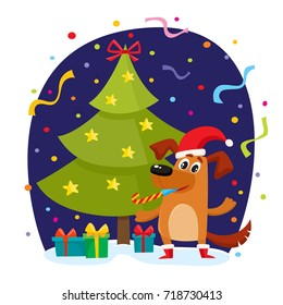 Christmas greeting card, banner, poster template with funny dog in Xmas hat and boots, fir tree and presents, cartoon vector illustration. Funny dog in Christmas hat and boots, Xmas tree and presents