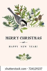Christmas greeting card with a bird and winter plants. Fern, spruce, mistletoe, larch, thuja and titmouse. Botanical illustration. Vector. Colorful.