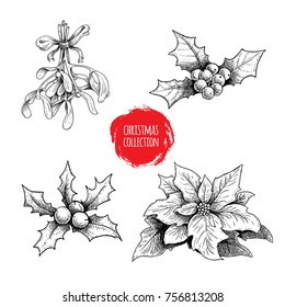 Christmas hand drawn plants collection. Holly berries, poinsettia, mistletoe. Seasonal winter symbols. Decorations for greeting cards and invitations. Vector illustrations set.