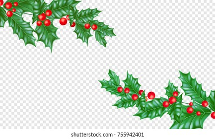 Christmas holiday greeting card background template New Year fir or pine tree branch and holly leaf wreath. Vector Christmas or New Year decoration design on transparent luxury white.