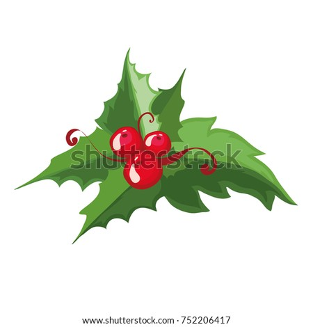 christmas holly berries vector illustration christmas decorations