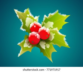 Christmas holly berry leaves with frost isolated on blue green background