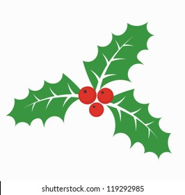 Christmas holly berry - vector illustration