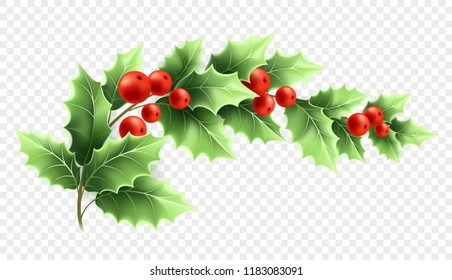 Christmas Graphics Transparent.Holly On Transparent Background Images Stock Photos