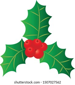 Christmas holly on white background