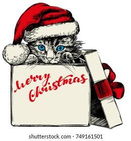 Christmas kitten in Santa stocking hat hand drawn vector illustration sketch