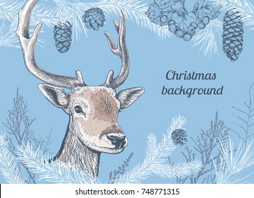 Christmas and New Year background with deer, different branches and cones. Fir tree, cedar, pine, arborvitae, hawthorn. Hand drawn sketch. Design for greeting cards, calendars, banners, invitations.