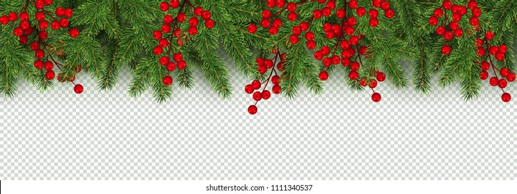 Christmas and New Year border of realistic branches of Christmas tree and holly berries Element for festive design isolated on transparent background Vector illustration