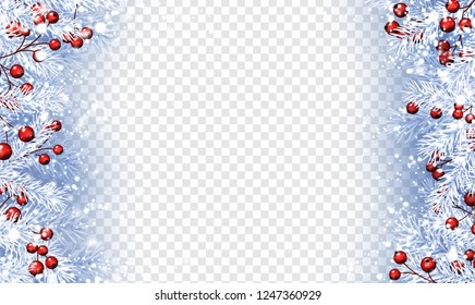 Christmas and New Year poster with white fir branches, holly berries and snow. Vector transparent background.