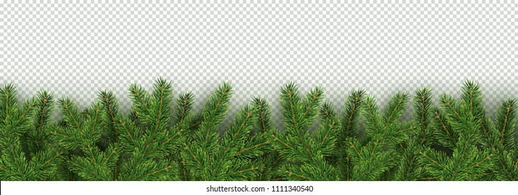 Christmas, New Year, Winter border with realistic branches of Christmas tree Xmas element for festive design isolated on transparent background Vector illustration