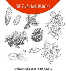 Christmas pine, fir tree branches and cones, holly leaf bows sketch. Hand drawn vector pencil drawing elements for Christmas and New Year design