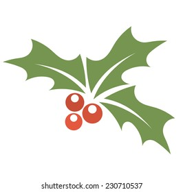 Christmas plant holly berry. Vector illustration