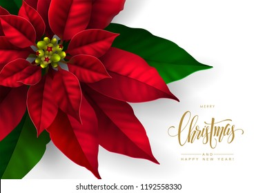Christmas Postcard with Red Poinsettia Flower and Calligraphic Inscription