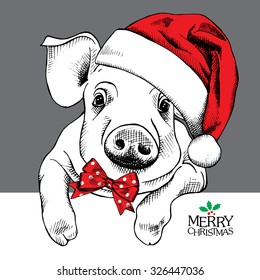 Christmas poster with image a pig portrait in Santa's hat and with bow. Vector illustration.