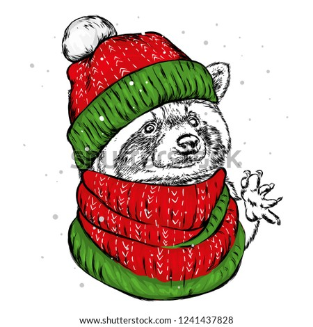 730073046ffae The christmas poster with the image raccoon portrait in Santa s hat. Hand  draw vector illustration