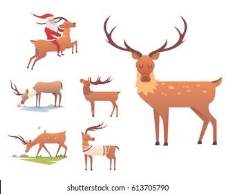 Christmas reindeer holiday mammal deer xmas celebration cute decoration winter art new year wildlife animal and santa man character vector illustration.