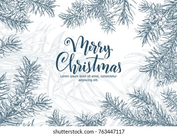 Christmas sketch hand drawn illustration with pine tree branches and cones.Vector eps10 illustration for your design.