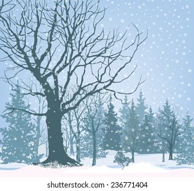 Christmas snow landscape wallpaper. Snowy forest background. Tree without leaves over snow.  Winter garden.