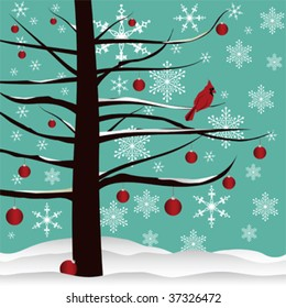 Christmas tree background designed with red Cardinal, red ornaments, snow  and snowflakes.