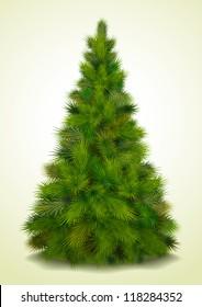 Christmas tree, realistic vector illustration