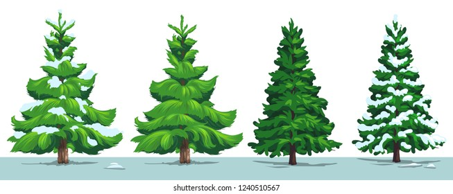 Christmas tree with snow. Vector green pine, fir and spruce trees with snowy branches in winter forest, isolated on white. Xmas and New Year holidays design