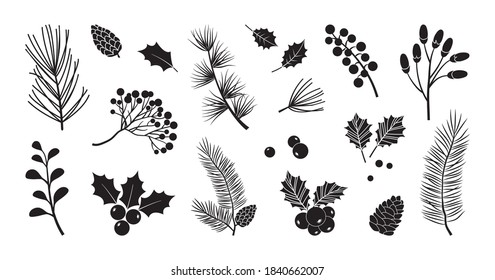 Christmas vector plants, holly berry, christmas tree, pine, leaves branches, holiday decoration, winter symbols isolated on white background. Black silhouettes. Vintage nature illustration