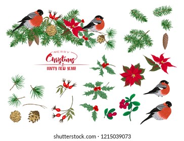 Christmas wreath of spruce, pine, poinsettia, dog rose, cowberry, mistletoe and bullfinches. Set of elements. With Merry Christmas and Happy New Year. Vector illustration.