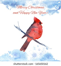 Christmas/New Year greeting card with cardinal.