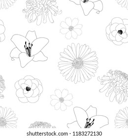Chrysanthemum, Aster, Camellia, Cosmos and Lily Flower Background Outline. Vector illustration