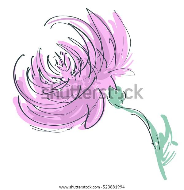 Chrysanthemum Goldendaisy Flower Vector Sketch Simple Stock Vector Royalty Free 523881994
