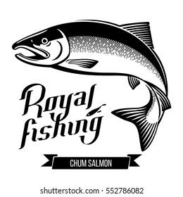 Chum Salmon fish. Black and white outline vector illustration