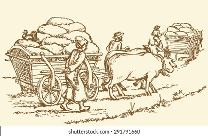 Chumak is historic occupation on Ukraine as merchants or traders, and big cartload laden with sacks of salt. Vector freehand ink drawn background sketch in art doodle antiquity style pen on paper