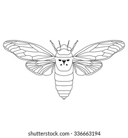 cicada. Cicadidae. Sketch of cicada. cicada isolated on white background. cicada Design for coloring book.  hand-drawn cicada. Vector illustration