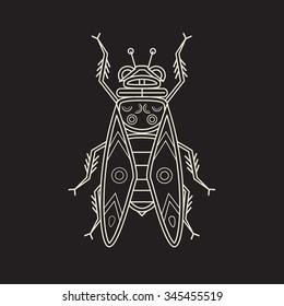 Cicada, line art vector illustration