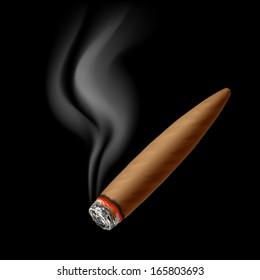Cigar with smoke. Vector.