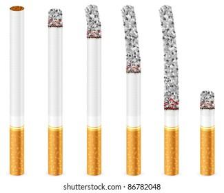 Cigarette set on a white background. Vector illustration.