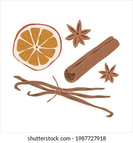Cinnamon, anise star, vanilla and dried orange slice spice set, hand drawn illustrations of seasoning, mulled wine ingredients, realistic detailed vector drawing isolated on white background