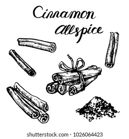 Cinnamon spice stick set isolated on white background ink sketch hand drawn illustration for coloring book page