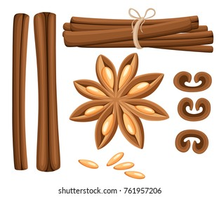 Cinnamon stick, star anise, anise and cardamom vector. Isolated icons on white background. Website page and mobile app
