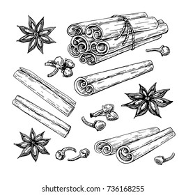 Cinnamon stick tied bunch, anise star and cloves. Vector drawing. Hand drawn sketch. Seasonal food illustration isolated on white. Engraved style spice and flavor. Cooking and mulled wine ingredient.