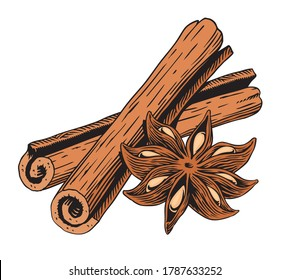 Cinnamon sticks and star anise, isolated on white background. Engraving style vector illustration.