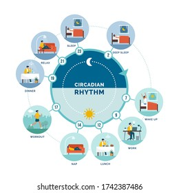Circadian rhythm and daily activities: daily routine of a woman and sleep-wake cycle, healthy lifestyle concept