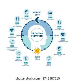 Circadian rhythm and sleep-wake cycle: how exposure to sunlight regulates hormones production and body processes during day and night
