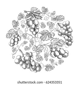 Circle pattern bunches of grape doodle with repeating beautiful berries on white background hand drawing vector illustration