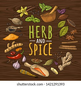 Circle shape set with garlic, cinnamon, cocoa, vanilla, poppy, mortar, scoop, pestle, pepper, mint, ginger, bay leaf, cardamom. HERB and SPICE lettering. Vector color vintage engraving on wood texture