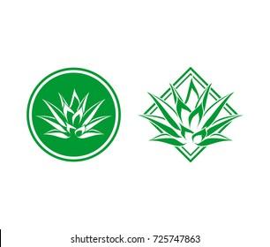 Circle and Square Abstract Aloe vera Line Art Logo Symbol